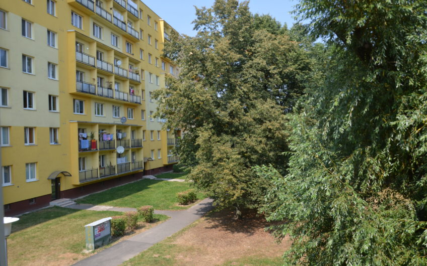 Studentský byt – Podroužkova